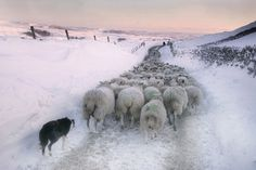 Stephen Garnett – Malham Moor in winter, North Yorkshire, England
