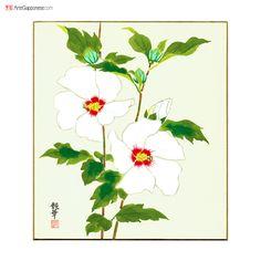 """ROSE DI SHARONLa prima testimonianza storiografica della coltivazione di questi bei fiori, che i coreani chiamano mugunghwa (무궁화), risale a più di 1400 anni fa: in un antico testo mitologico cinese la Corea viene chiamata infatti """"la terra dei saggi in cui per mille miglia sbocciano in abbondanza i mugunghwa"""" (君子之國,地方千里,多木槿之華).  La pittura su cartoncino con bordi dorati è firmata dall'artista Tsuyaka"""