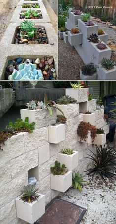 , For those people who living in dry areas, having a beautiful and easy-to-maintain garden is not an easy task. Fortunately, you can create succulent la. , 20 Ideas for Creating Amazing Garden Succulent Landscapes Succulent Landscaping, Succulent Gardening, Planting Succulents, Backyard Landscaping, Succulent Plants, Landscaping Ideas, Organic Gardening, Succulent Garden Ideas, Diy Garden