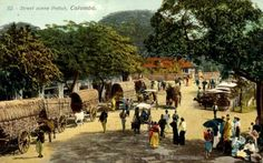 Street scene Pettah Colombo Late 1800s- Historic Images of Sri Lanka