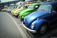 Volkswagen Beetle meeting מפגש חיפושיות | Flickr - Photo Sharing!