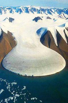 ✯ Platypus Tail - Icefield