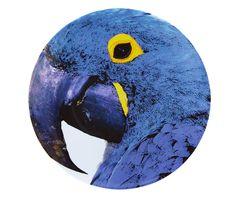Olhar o Brasil by Chicô Gouvêa | Charger Plate Blue Macaw