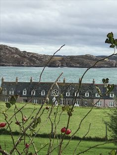 Bishops House. Built in 1894. Iona, Scotland