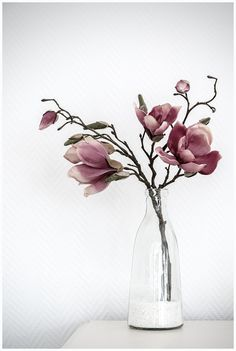Vase Dekoration Ideen 2019 Vase Dekoration Ideen The post Vase Dekoration Ideen 2019 appeared first on Floral Decor. Arte Floral, Deco Floral, Ikebana, Magnolia Branch, Magnolia Flower, Vases Decor, Flower Vases, Cactus Flower, Flower Power