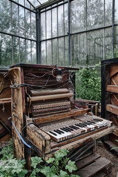 "stephanocardona: "" Abandoned piano by Karolien Link: http://ift.tt/1Kcemon "" Karolien Van Bavegem on 500px"