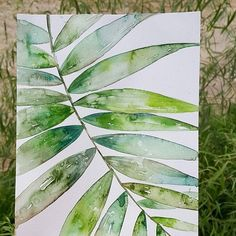 #watercolor #plants