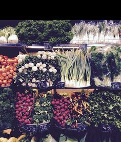Organic shopping ready for the week at Frewville Foodland, Adelaide