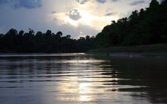 Reflection of the sunset at Kinabatangan River in Sabah.