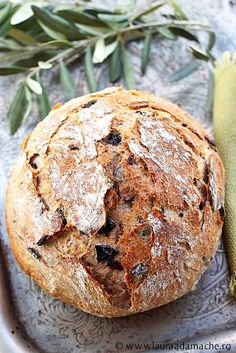 Wonderfully crusty olive bread loaf...throw in a glass of wine, I'm good...