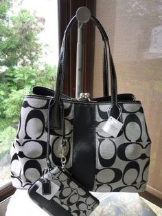 Coach Signature Stripe Framed Carryall Wristlet Set Retails 376 00