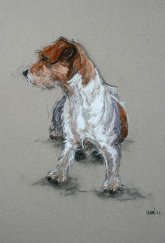 Cute Terrier dog card 'Whatszat' from an original charcoal and chalk sketch. $4.00, via Etsy.