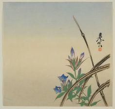 Gentians ZESHIN SHIBATA (JAPANESE, 1807–1891) C. 1880