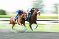 One of my favorite photographs from an early morning spent at Keeneland in Lexington, Kentucky.  Motion blur combined to galloping horses is one of my favorite things.
