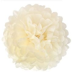 Generic Pack of 10 Ivory Cream Wedding Decorative Props Tissue Paper Pompoms Pom Poms Balls Wedding Party Home Decoration10 25cm >>> Read more  at the image link.