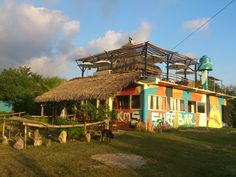 km5 surf bar - Google Search