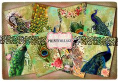 Digital Collage Sheet Designed Gift Tags and Cards for Scrapbooking Printable Vintage Paper for Jewelry Holders Tags PEACOCKS Card Tags, Gift Tags, Cards, Peacock Images, Scrapbook Paper Crafts, Scrapbooking, Arts And Crafts Projects, Digital Collage, Collage Sheet