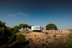 Casa do Dia: Pedro Reis - Arcoweb