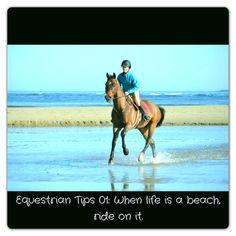 My philosophy <3 Equestrian Life