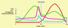 Gráfico FSH