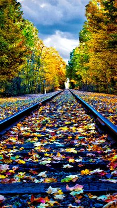 Fall on the tracks source Flickr.com Beautiful Roads, Beautiful Landscapes, Beautiful Places, Desktop Background Pictures, Scenery Pictures, Autumn Scenes, Train Art, Scenery Photography, Old Trains
