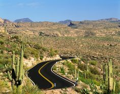 The Apache Trail takes you on winding roads, past lakes, canyons, incredible desert views and Tortilla Flat. An adventurous driving experience.