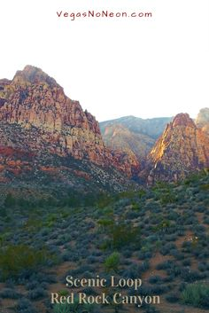 Great DayTrip spot 15 miles from the Strip - stunning geology, sweeping landscapes, veg.variety  cool walkabouts. 3 different areas to enjoy, each tonic for those long Vegas nights .. ;)