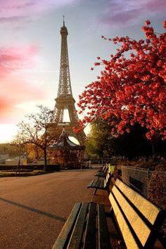#Paris #Eiffel #tower #flower #sunset #romantic #travel #destination #Europe #street #relax #vacation #trip #wishlist #pink