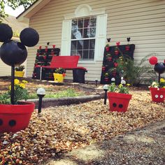 Mickey Mouse yard