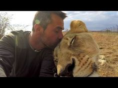 American Tourist Killed by Lion | Kevin Richardson - The Lion Whisperer responds - YouTube