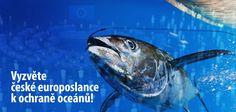 6. února bude Evropský parlament hlasovat o reformě Společné rybářské politiky EU. Spolurozhodovat o ní budou i čeští europoslanci. Napište jim osobní zprávu, v níž je požádáte, aby využili této jedinečné příležitosti a ukončili nadměrný rybolov.