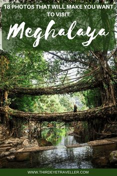 Meghalaya was incredible but Cherrapunjee is the jewel in its crown. Here's why you should visit in North East India Beautiful Places To Travel, Best Places To Travel, Cool Places To Visit, India Travel Guide, Asia Travel, India Tour, India India, Northeast India, North India