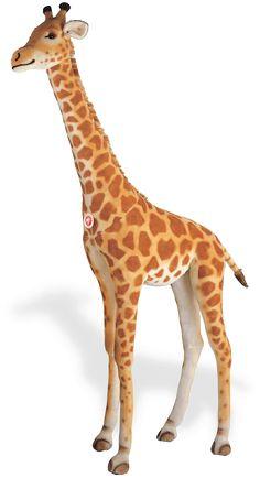 1000 Images About Jaera S Giraffes On Pinterest