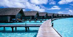 Cocoa Island, Maldives: a desert island resort dream - Telegraph Hotel Berlin, Hotel Paris, Bali, Cocoa Island, Hotels And Resorts, Best Hotels, Maldives Wallpaper, Barcelona Hotel, Places To Travel