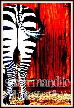zebra butt print