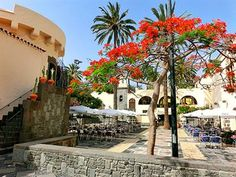Discover where to stay in Gran Canaria. The best destinations from families holidays to romantic getaways, this island has somewhere for all Grand Canaria, Places Ive Been, Places To Go, Spain Holidays, Holiday Places, Canario, Romantic Getaways, Canary Islands, Capital City