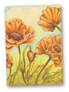 handmade artist trading card from Mama Dinis Stamperia: Prismacolor pencils  .... stamped the poppies ... colored with many light layers of pencil finishing off with the dark shading ... gorgeous!!!