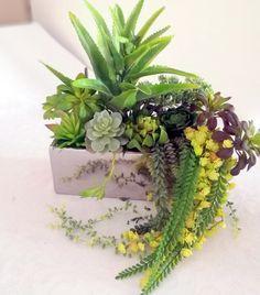 Sukulenty w srebrnej donicy 2  nr. 161 Floral Wreath, Wreaths, Green, Plants, Decor, Atelier, Floral Crown, Decoration, Door Wreaths