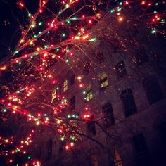 #christmas in #nyc #newyork - @Juni De Marcos- #webstagram