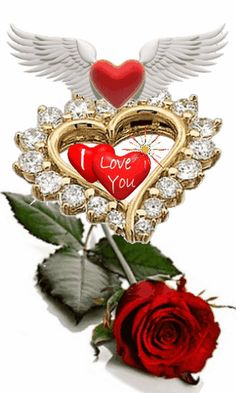 1 million+ Stunning Free Images to Use Anywhere Beautiful Love Images, Love Heart Images, I Love You Pictures, Love You Gif, Beautiful Rose Flowers, Beautiful Flowers Wallpapers, Love Flowers, Love Wallpaper Backgrounds, Heart Wallpaper