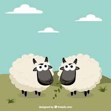 Resultado de imagen para dibujos infantiles de ovejas