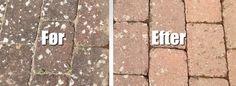 Aktiv Flise Før og Efter House Cleaning Tips, Cleaning Hacks, Garden Inspiration, Clean House, Aktiv, Gardening Tips, Outdoor Gardens, Outdoor Living, Household