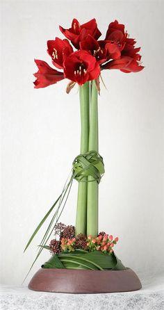 Flower arrangement with amaryllis and hypericum #Floral #Arrangement