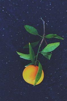#Orangeinspace | Justina Blakeney | VSCO Grid
