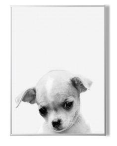 Nursery Animal Decor,Chihuaua Art,Baby animal Decor,Nursery Animal Print,Puppy Wall Decor,Baby Animal Prints,Printable art,Wall Decor Puppy by YourPrintsShop on Etsy