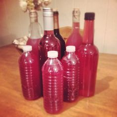 Bottling day!  Plum wine.  First batch...DELISH! Plum Wine, Homemade Wine, Hot Sauce Bottles, Delish, Food, Meal, Essen, Hoods, Meals