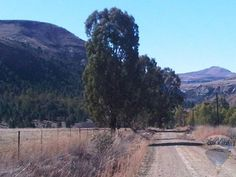 Fouriesburg 2 Free State, My Land, South Africa, Country Roads, Van, Mountains, Landscape, Places, Travel
