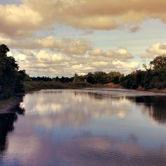 Sacramento River - Peter Frangel
