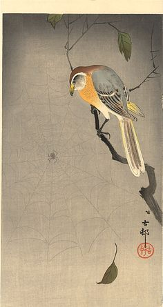 Ohara Koson bird and spider web