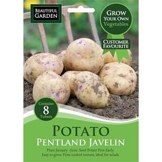 Pentland Javelin Seed Potato 8 Pack | Poundland